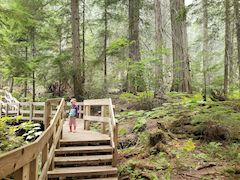 Must see Canadian National Parks with kids