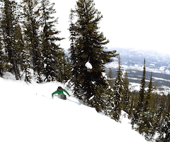 Women Ski Hard
