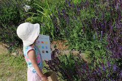 Outdoor activities for kids - try a rainbow scavenger hunt, great for preschool age kids