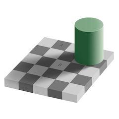 Adelson Checkerboard Shadow Illusion