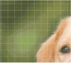 charted image cross stitch