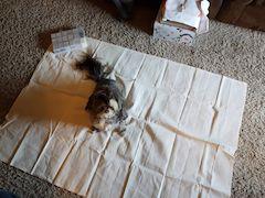 18 count aida large fabric