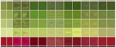 DMC palette variations between sources
