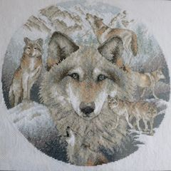 dimensions circle of wolves